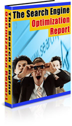 The Search Engine Optimization Report